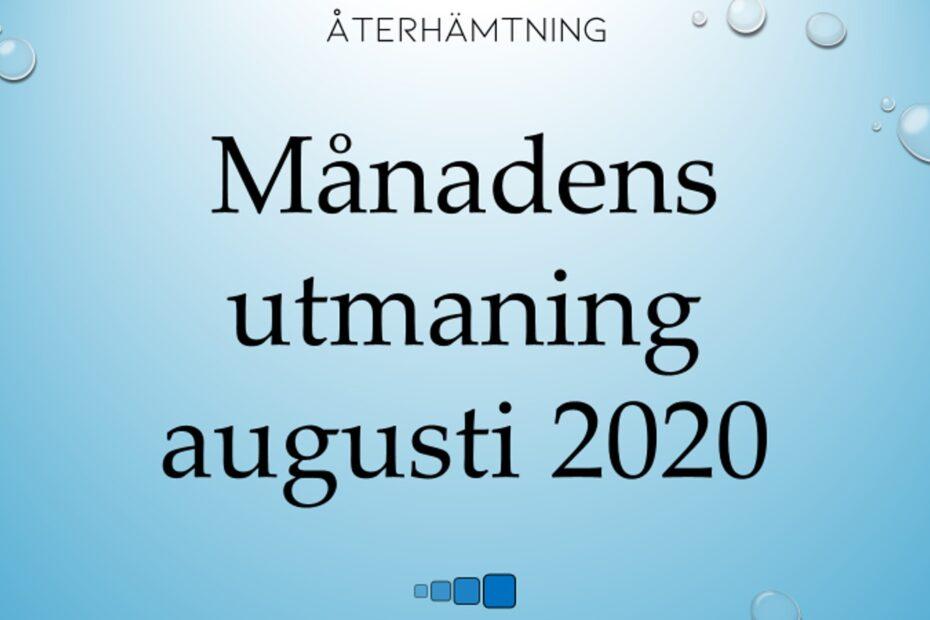 Månadens utmaning augusti 2020