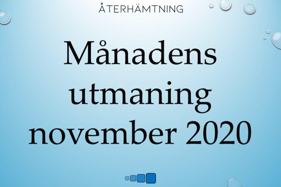 månadens utmaning november 2020