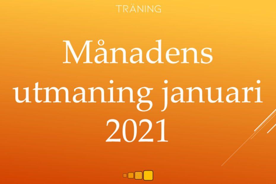 månadens utmaning januari 2021