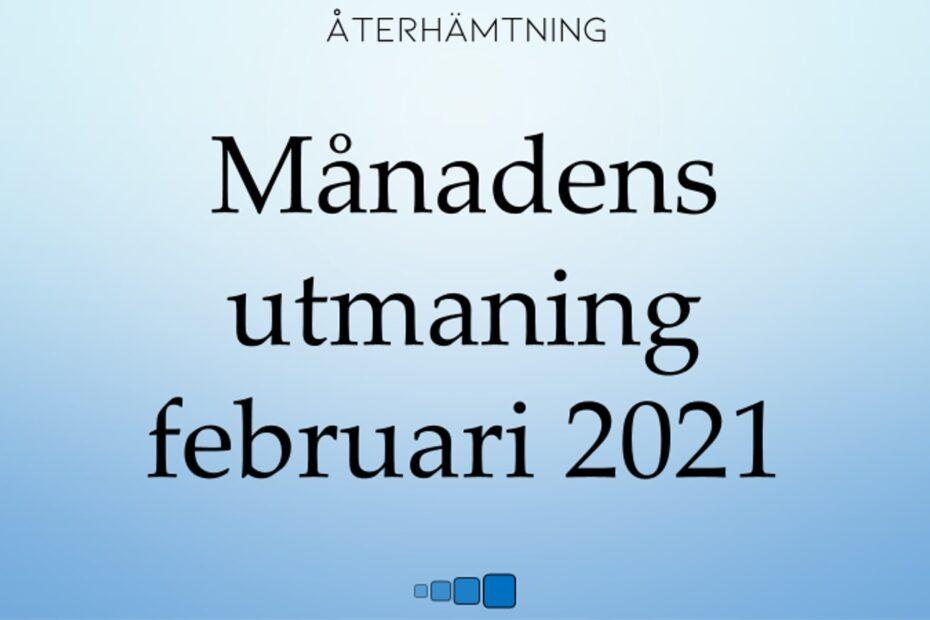 månadens utmaning februari 2021