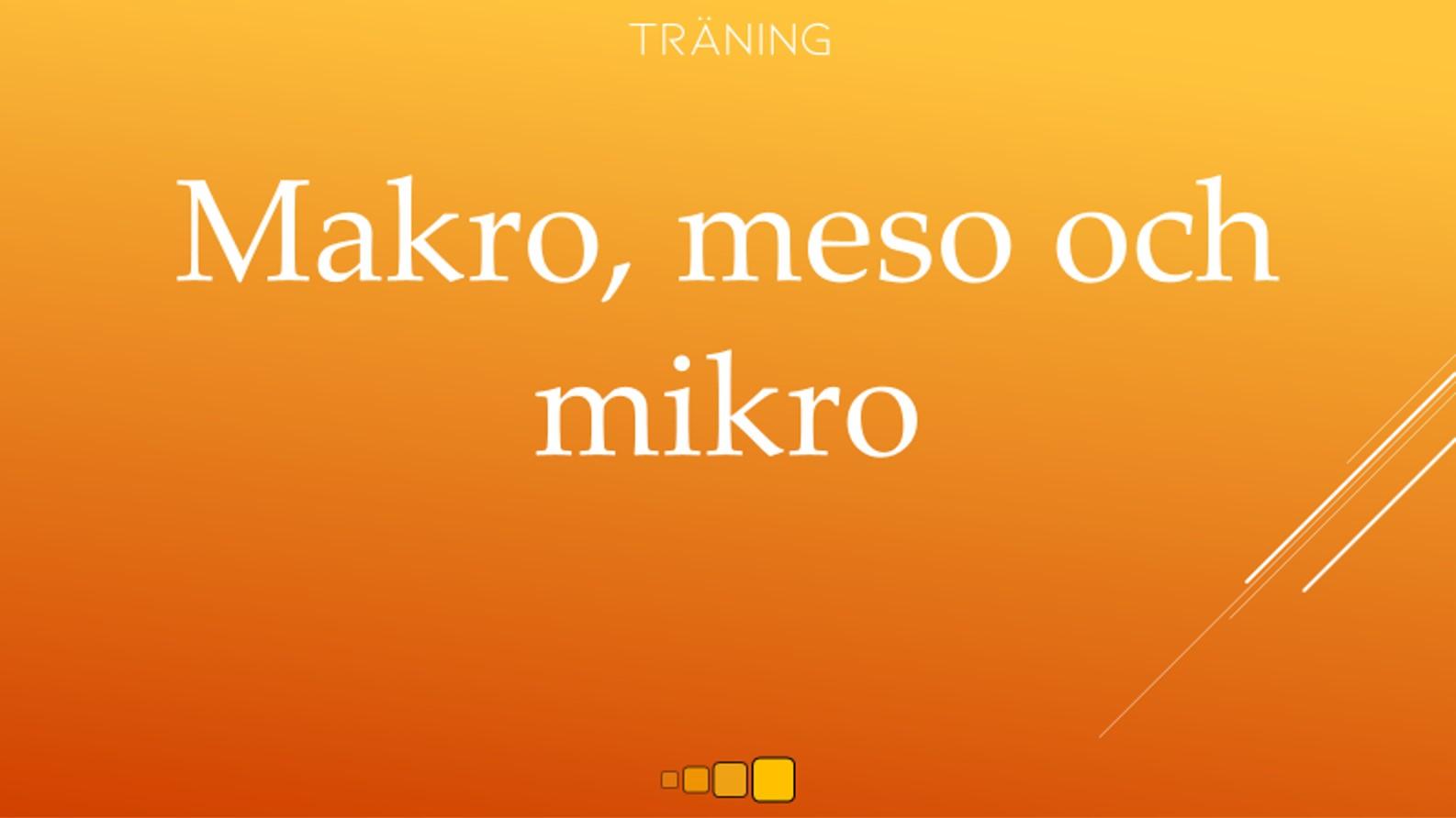 makro, meso och mikro